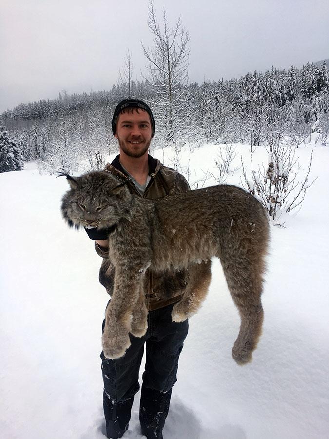 BC Winter Lynx Hunt
