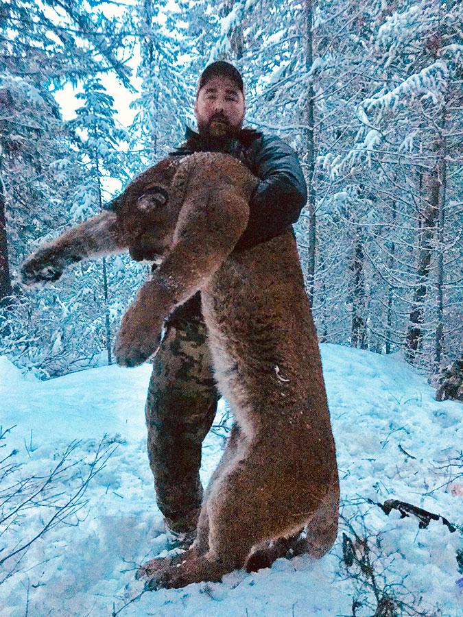 BC Cougar Hunt