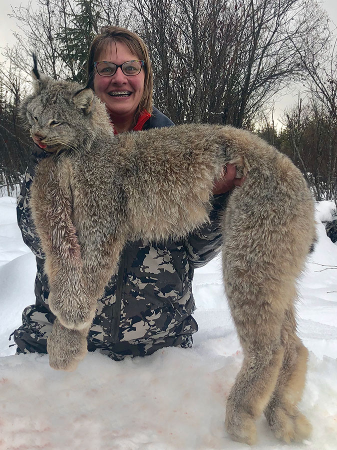BC Lynx Hunting