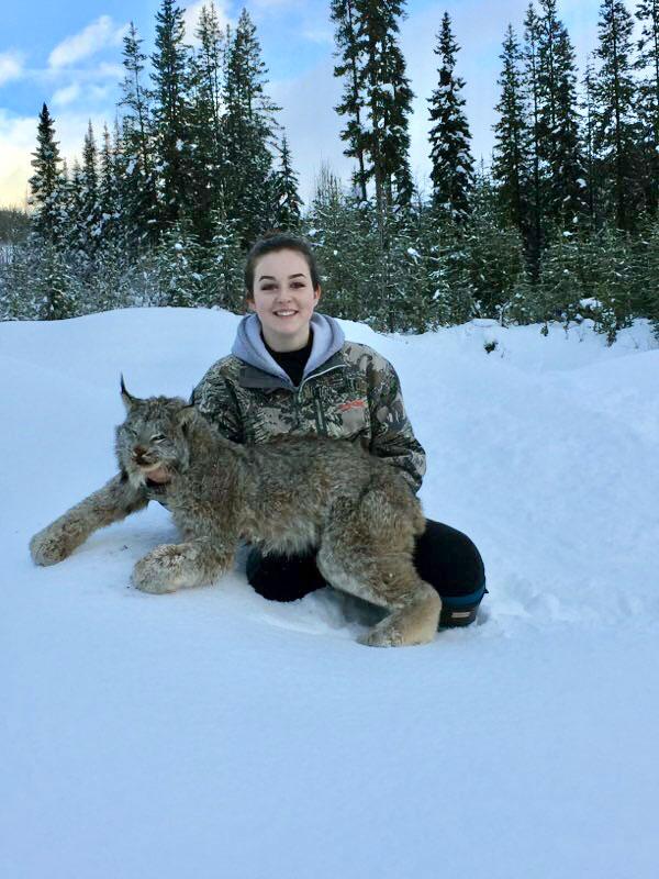 Canadian Lynx Hunt